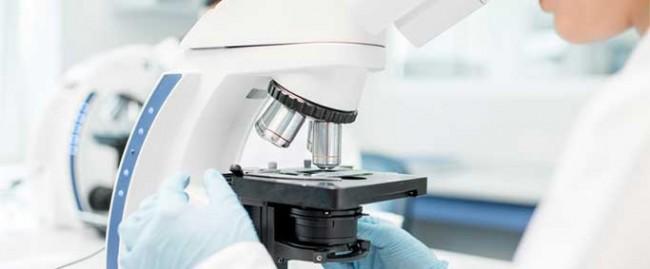 Droit de la recherche et de l'innovation