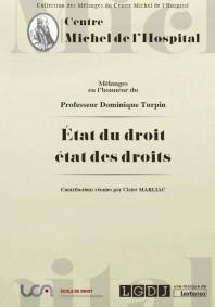 melanges-en-l-honneur-du-professeur-dominique-turpin-9782912589514