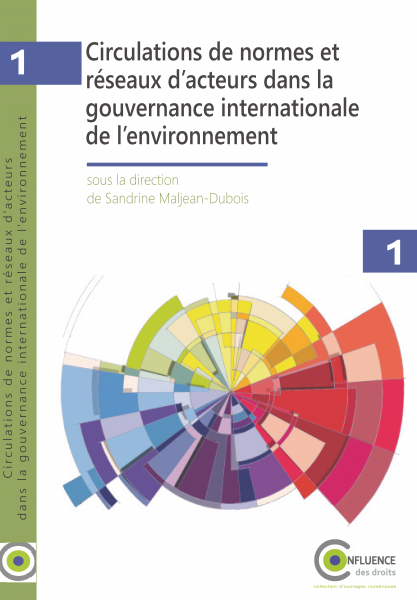 Circulations de normes et réseaux d'acteurs dans la gouvernance internationale de l'environnement