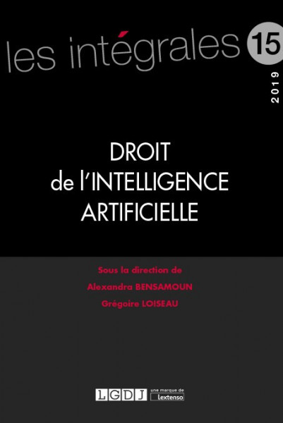 droit-de-l-intelligence-artificielle-9782275065649